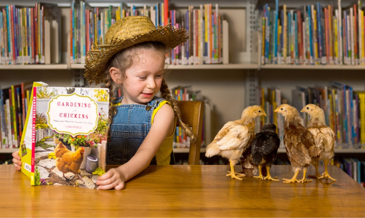 Young girl in straw hat reading to chickens in the Library